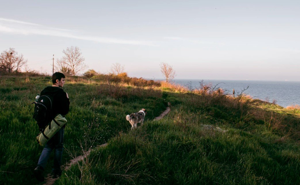 Outdoor Adventure with Your Dog: Easy Guide for Pet Owners