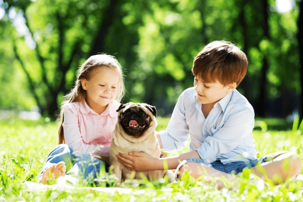 The Major Benefits Of Getting A Dog For Your Kid 2