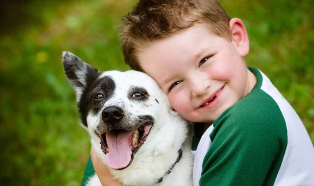 7 Life Lessons You Can Teach Your Children By Getting a Pet 1