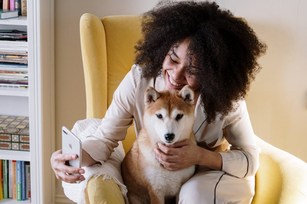 6 Tips For New Dog Owners 2